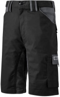 Dickies Shorts / Hose GDT Premium Short Black