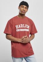 Southpole T-Shirt Harlem Tee Brick Red